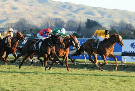 NZ Bloodstock Insurance Spring Classic Premier Raceday is tomorrow