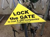 "ENVIRONMENTAL group Lock the Gate has hit out at the nation's policy on setting aside valuable environmental areas for ""offsets""."