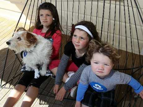 Pippa McCarthy, 6, and her siblings Lily, 5, and Fletcher, 2, with the family dog Roofus, whose foot remains bandaged after it was attacked by another dog. Photo / Paul Taylor
