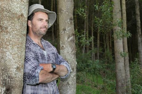 Ben McNeill, Waimarama farmer, with his quadrangulata eucalyptus tree trial. Photo / Warren Buckland