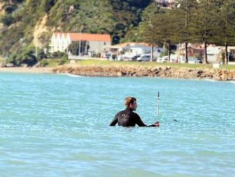 The two-hour sessions will be held at the Hardinge Rd Beach.A new era of surf lifesaving in Napier could be in the making as a result of a $6800 grant to help a new children's training programme.