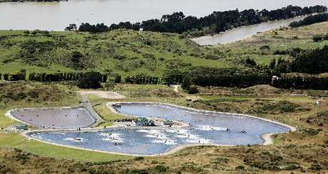 CONSENT BREACH: Bacteria has been released into Wanganui's treatment plant to speed up the breakdown of waste. PHOTO/FILE