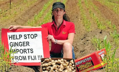 FEAR FOR INDUSTRY: Kylie Templeton from Templeton Ginger is concerned diseased ginger from Fiji will be allowed to be imported to Australia.