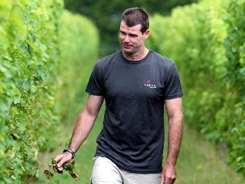 Vineyard manager Jonathan Hamlet inspects the organic rows at the Joseph Soler vineyard this year.