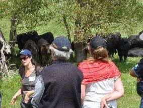 Agroecologist Nicole Masters discusses with seminar participants everything from production, to porina, to thistles, to erosion and facial eczema. Photo / Supplied