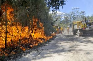 Rural fire brigades back burn near Crows Nest.