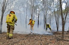 Emergency Services extinguish spot fires in bushland between Waddington Parade, College Rd and Laidley-Plainland Rd in Laidley on Tuesday.