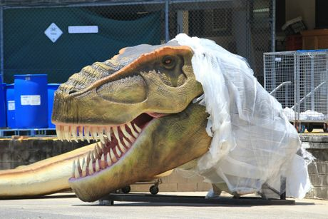 Palmer Coolum Resort reveals part of its first Dinosaur.