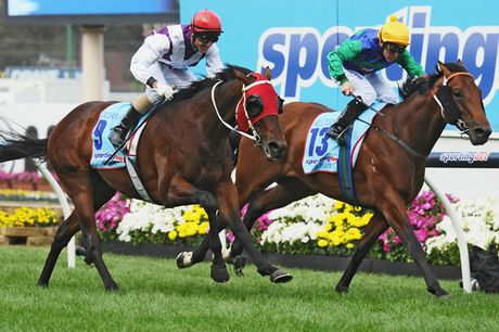 Jockey Glen Boss riding Ocean Park (L) defeats Chris Munce riding All Too Hard in the Sportingbet Cox Plate during Cox Plate Day at Moonee Valley Racecourse.