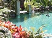 Before you dive in consider what you'll lose and gain by installing a pool