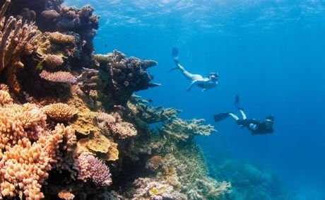 Australia's Great Barrier Reef is one of the major drivers of international visitors.