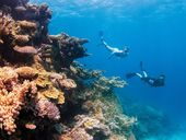 SIGNIFICANT progress has been made on meeting the World Heritage Committee's concerns about the Great Barrier Reef, Environment Minister Greg Hunt said today.