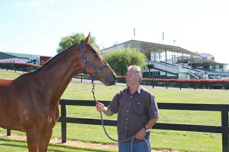 Tauranga trainer Jim Pender with Johnny Bravo, who will make his debut at the opening Christmas at the Races meeting on Friday.