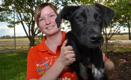 TENPEN PUPPY: Kingaroy RSPCA's Petrina Brown and four month old puppy Rosie are excited for the upcoming RSPCA Bowling Fundraiser.