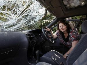 Janette McKay's car was written off when she drove into a cow on the Whangarei-Tutukaka Rd at night.
