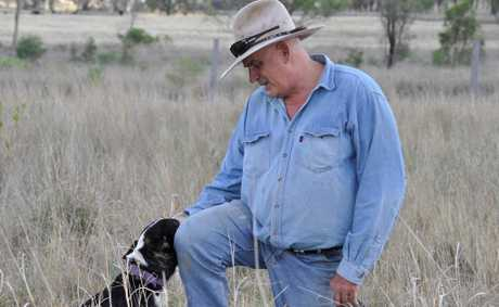 Cyril Stewart, president Coopers Gap Wind Farm Supporters Group, and dog Bonnie, on his property near Cooranga North, 650m from a proposed turbine.