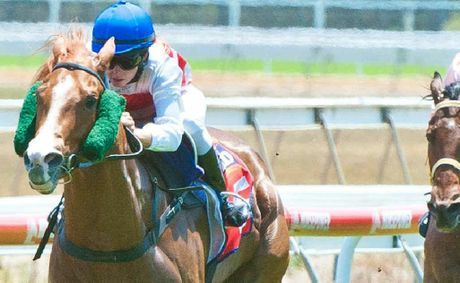 With four feet off the ground Shades Of Sequalo flies to the line under jockey Kasie Stanley to win at Coffs Harbour yesterday. Rob Wright.