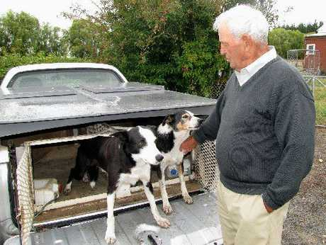 Veteran sheepdog trialist and former New Zealand champion Keith Satchwell with trusty canines Roy (left) and Sue, in March 2010.