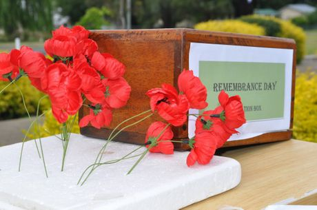 Sunday is a day to remember fallen Diggers at Remembrance Day ceremonies. The Flanders Poppy as red poppies were among the first plants to spring up in the devastated battlefields of northern France and Belgium.