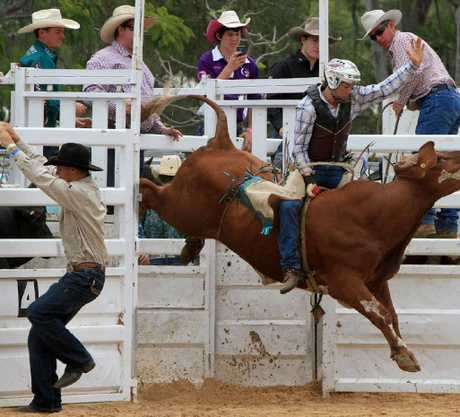 LEFT: A bull rider holds tight as the gates open.