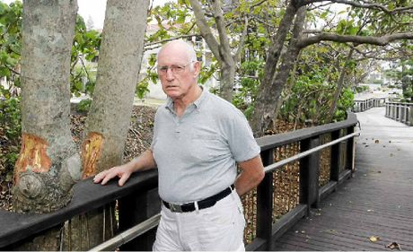 DAMAGE DONE: Coolum Boardwalk Association president Dave Simons inspects the tree vandalism.