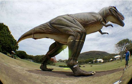 UNDER WRAPS? The T-rex replica, captured in a secret fish-eye lens photo, stalks the Palmer Resort fairways.