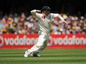 David Warner of Australia fields the ball during day one of the First Test match between Australia and South Africa at The Gabba.