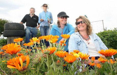 Cancer Organic Gardening