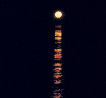 MAGICAL STEPS: A golden staircase links the moon to Roebuck Bay.
