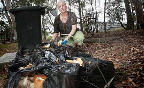Lyn Thomson is upset that someone leaves bags full of bread scattered in Kev Hooper Park, Inala for birds to feed on every day. Photo: Inga Williams / The Satellite