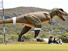 Jeff the tyrannosaurus rex towers over golfers at Palmer Coolum Resort. Clive Palmer has plans for 149 more just like him.