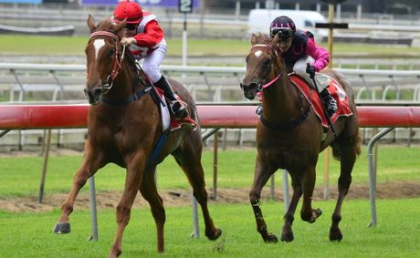 Sister Magic winning on debut at Eagle Farm last Saturday for apprentice Brooke Richardson.