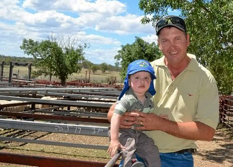 GOOD TIMES FOR FEED INDUSTRY: David Joppich with his son, Archie, at Warwick sheep sale.