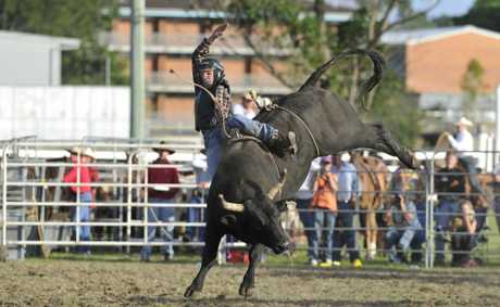 Luke Dillon gets a rough ride from this bull in the open bullriding event at the Maclean Rodeo.Photo: Adam Hourigan/The Daily Examiner