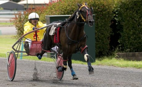 TAB harness racing returns to Clifford Park Paceway next month with the staging of two Sunday afternoon meetings.