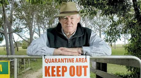VIGILANT: Pimlico Farmer Frank Curran, who had two horses die of hendra virus.