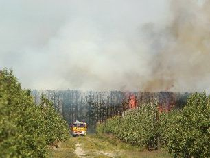 Crews from Napier, Hastings and rural stations spent several hours attending to this blaze on Twyford Rd yesterday afternoon. Photo / Glenn Taylor