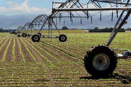 WATER WOES: Using freshwater for irrigation is one of the big issues to be faced by our country. PHOTO/FILE