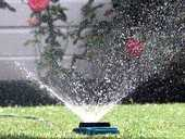 Sprinklers can only be used on alternate days between the hours of 6-8am and 6-8pm.