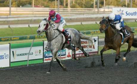 Silver Scholar and apprentice Melody O'Brien hold on for victory from Bannett at Clifford Park yesterday.