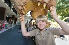 Robert Irwin turns 9 and receives a 13 meter croc as his birthday gift.