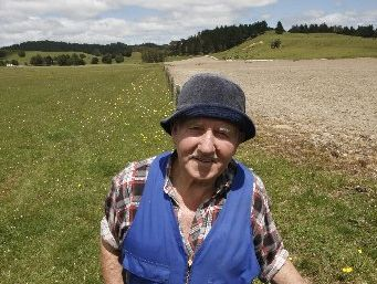 Jack Ilich with oversown grass on his Hikurangi Swamp farm (left) with a neighbour's maize crop (right).