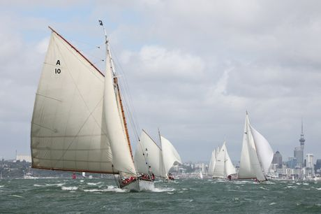 Sixty foot Thelma, built in 1897, is one of the stars of Auckland Anniversary Regatta.