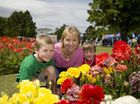 THE 2013 Toowoomba Carnival of Flowers has started. To help you plan your weekend, here is guide to all the major events.