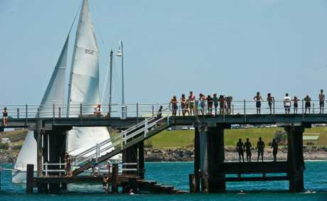 There's always plenty of action at the Jetty when summer comes around. Photo: Rob Wright / The Coffs Coast Advocate