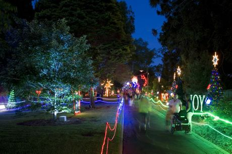 ... switches on its annual Christmas lights display | Toowoomba Chronicle