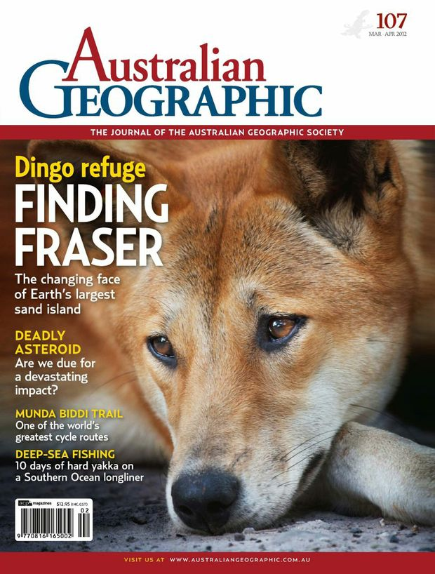 Australian Geographic has won a national award for its cover featuring a Fraser Island dingo that was later euthanised.