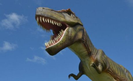 Jeff the dinosaur is luring international tourists to Coolum, Clive Palmer says.