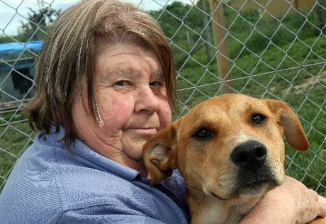 FUNDING ISSUE: Val Ball, Wairarapa SPCA manager, with dog Greta last year, said there were funding challenges for the organisation.