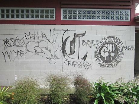 Police are seeking assistance to identify those responsible for a spate of tagging in Ngaruawahia.